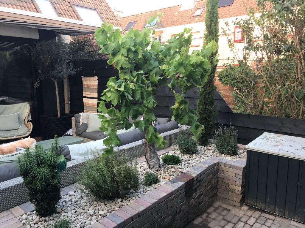 stenen plantenbak maken