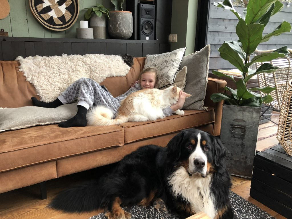 Thuis bij Familie over de Kook