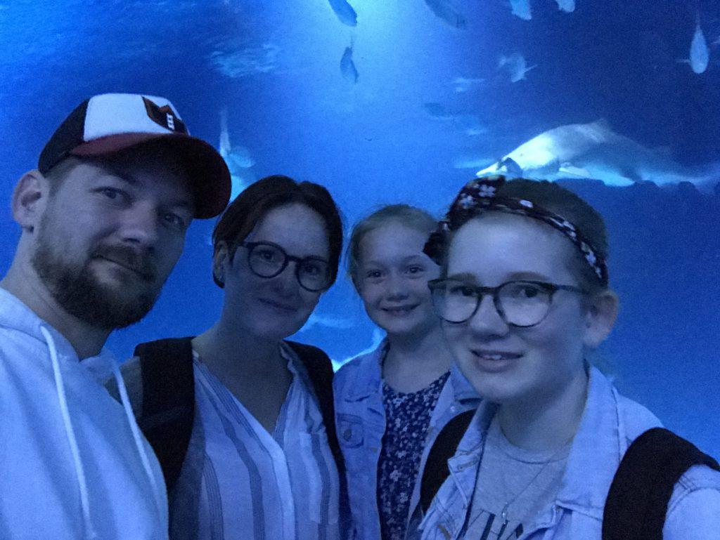 L'Oceanográfic in Valencia, het grootste aquarium in Europa
