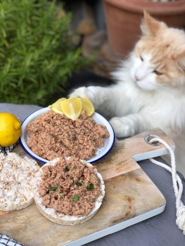 tonijnsalade met Italiaanse kruiden op een rijstwafel